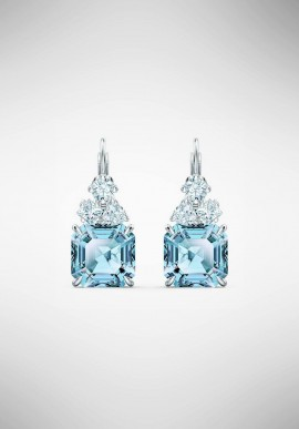 Swarovski Sparkling Earrings 5524139