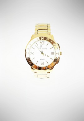 Ottaviani watch in golden steel 15362